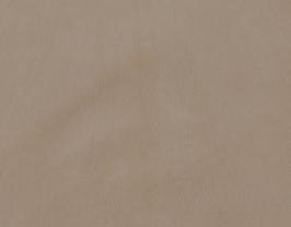 Morceau de cuir de chèvre chagrin beige