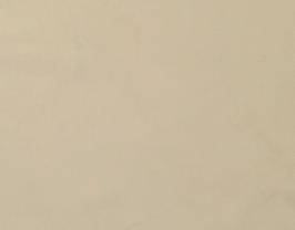 Morceau de cuir de vachette beige clair