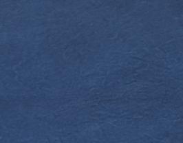 Morceau de cuir de chèvre chagrin bleu marine