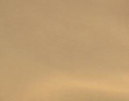 Coupon de cuir d'agneau doré ultra brillant