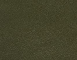 Coupon de cuir de chèvre vert fougère