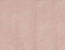 Morceau de cuir de chèvre nude