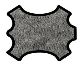 Peau de chèvre argenté imprimé lézard
