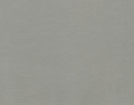 Morceau de cuir de chèvre chagrin gris clair