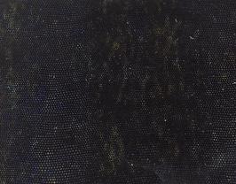 Coupon de cuir d'agneau noir imprimé lézard or et bleu