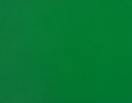 Coupon de cuir d'agneau nappa vert gazon