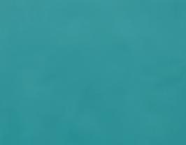 Morceau de cuir de vachette turquoise