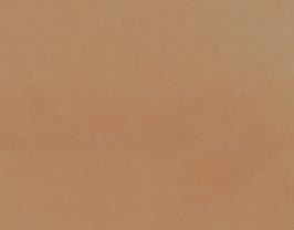 Morceau de cuir de chèvre chagrin camel
