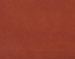 Morceau de cuir de chèvre nubuck rouille