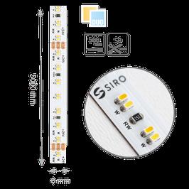SL-DUO-24W-5000