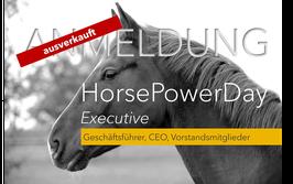 2. Horse Leadership Power Training Executive 2020