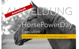 3. Horse Leadership Power Training Executive 2020