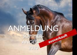 2. Horse Leadership Power Sommer-Angebot 03.08.20