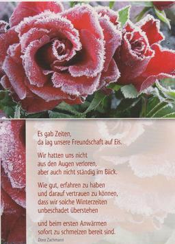 Postkarte gefrorene Rosen - Freundschaft auf Eis