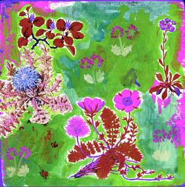 Blumen 0622