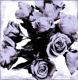 Blumen 0629