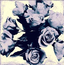 Blumen 0628