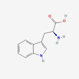 L-Tryptophan (Molecular Biology Grade)