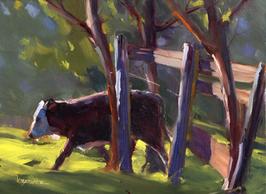 No. 144 - Calf Romp