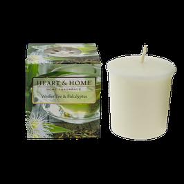 Weißer Tee & Eukalyptus