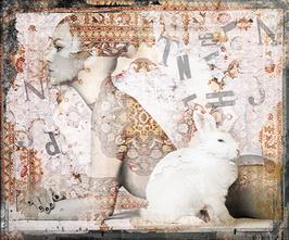 Bakker: Wild Bunny I
