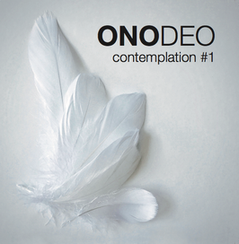 ONODEO contemplation #1