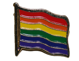 Regenbogen     anstecker Flagge