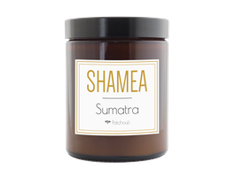 SUMATRA - Patchouli