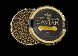 Kaviar «OSIETRA»