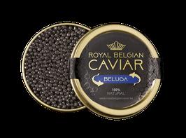 Kaviar «BELUGA»