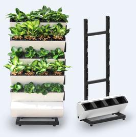 Starter Set, 24 Pflanzen, Rollen, Kapillar- Pflanzsubstrat