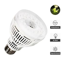 Pflanzenlampe 15 Watt, Tageslichtweiß
