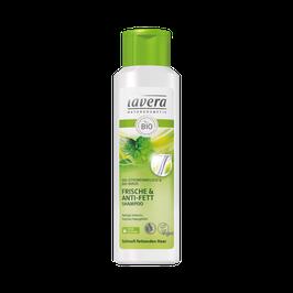 Frische & Anti-Fett Shampoo