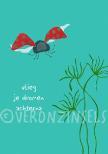 VLIEG - VERONZINSELS (B168)