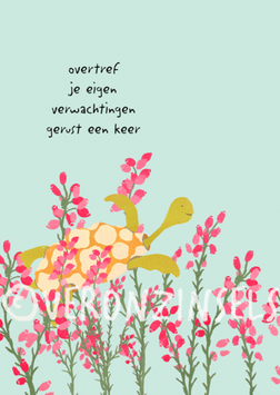JE EIGEN VERWACHTINGEN - VERONZINSELS (B259)