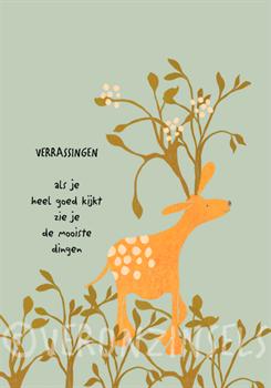 VERRASSINGEN  - VERONZINSELS (B046)