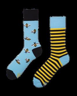 BEE BEE – MANY MORNINGS