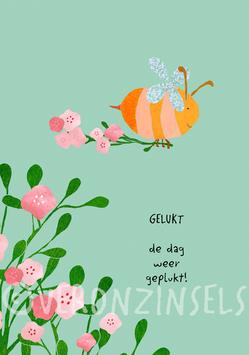 GELUKT - VERONZINSELS (B054)