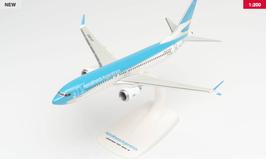 Boeing 737 Max 8 - Aerolineas Argentine