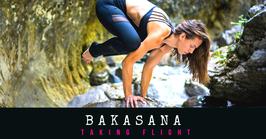 BAKASANA TAKING FLIGHT