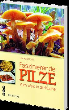 Faszinierende Pilze