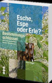 Esche, Espe oder Erle (Bestimmungsschlüssel)