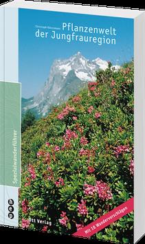 Pflanzenwelt der Jungfrauregion