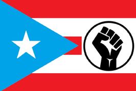 Bandera del Puño Boricua