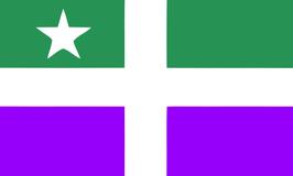 Bandera del Poblado Castañer