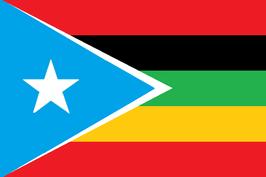Bandera Afro-Boricua