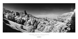 """Poster """"Castle view"""" 50x100 cm"""