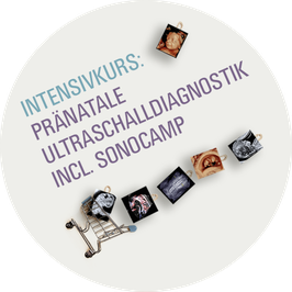 INTENSIVKURS PRÄNATALE ULTRASCHALLDIAGNOSTIK INCL. SONOCAMP