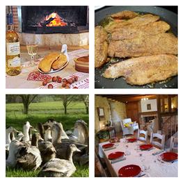 Week end Cuisine du foie gras maison (2jours/2nuits - pension complète)