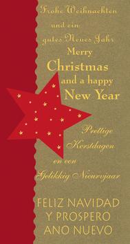 Elegance - Weihnachtskarte Nr. 753